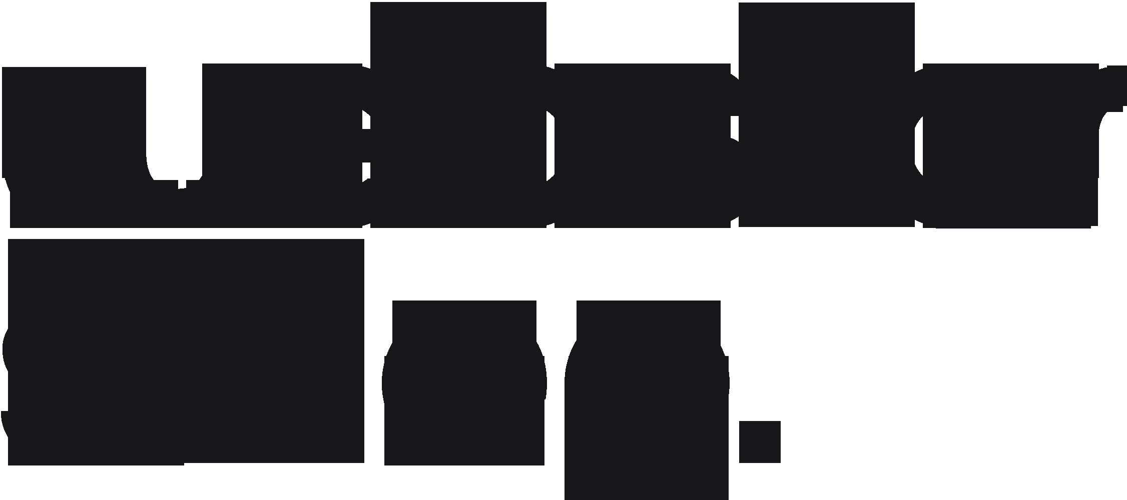 Webstar Media Group : tworzenie stron www Kutno : Płock : Łęczyca : Łowicz : Włocławek
